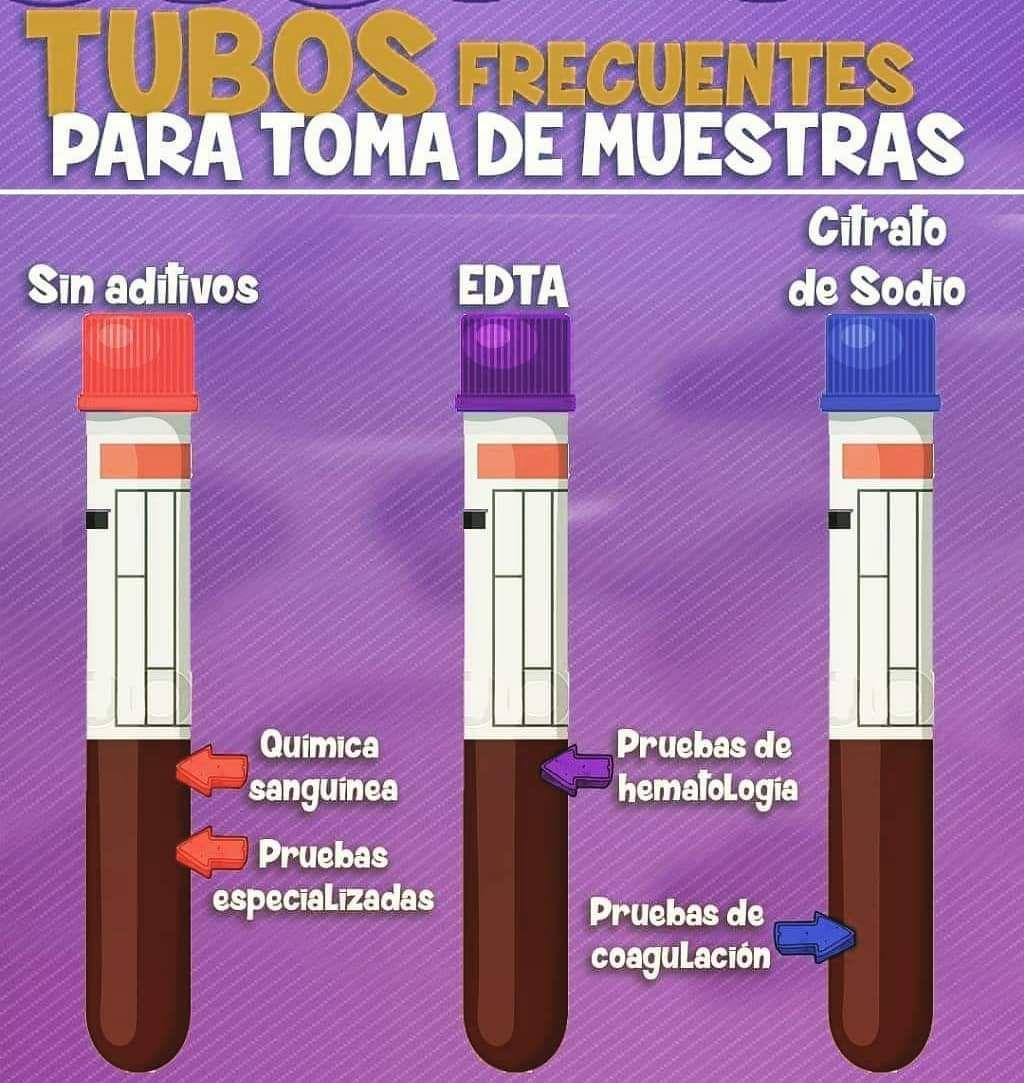 Tubos De Muestra Cosas De Enfermeria Anatomía Médica Enfermería Farmacología