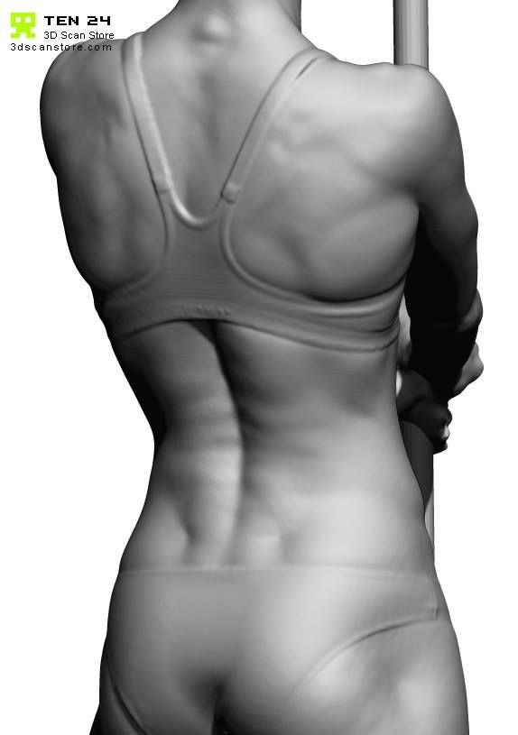 3d sk Christmas Scan | anatomy | Anatomy reference, Body
