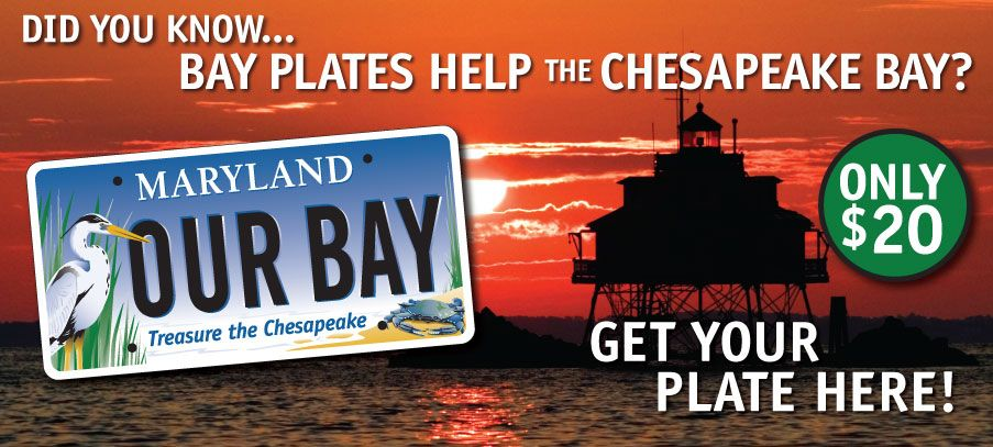 "Tom W., Fall 2016, Section 1 ""Treasure the Chesapeake"" One of the stickiest campaigns in this area, the ""Bay Plates"" are found on vehicles all over Maryland. The non-profit Chesapeake Bay Trust started the campaign more than 20 years ago and uses money raised to provide grants for projects to help restore the Chesapeake Bay. Info found at http://www.bayplate.org/twoh6mg97o8b5ftob23jqdy7criks2"