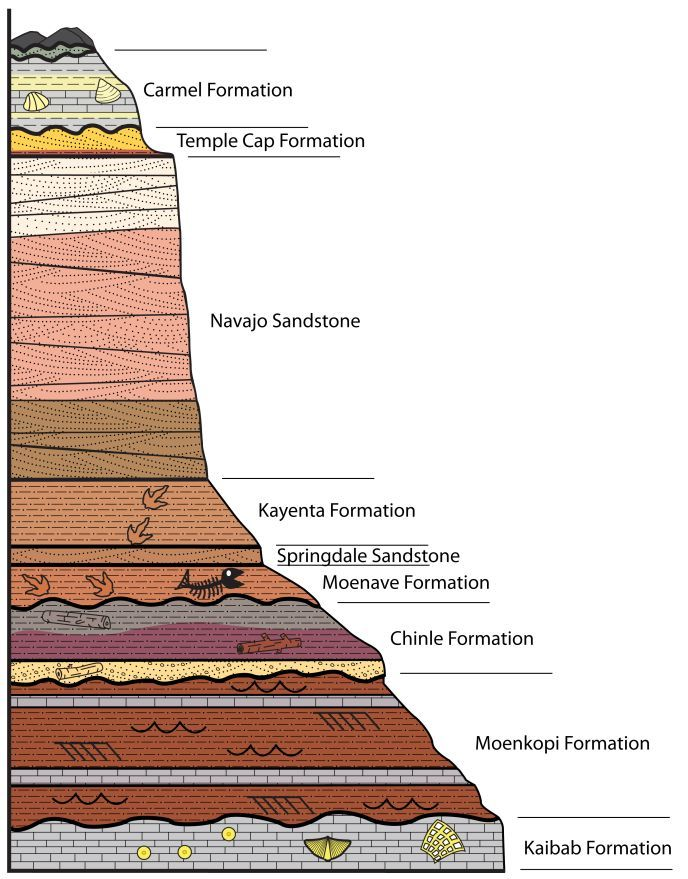 Graphic Of Stratigraphic Column Showing Zions Sedimentary Layers