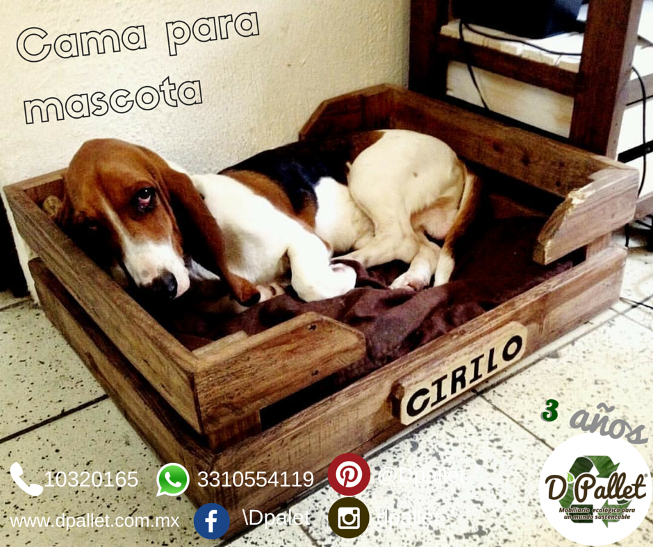 Cama para mascota  #dpallet #mobiliarioecologico #diseñointeriorMobiliario para #mascota   ventas@dpallet.com.mx WhatsApp 3310554119 Tel. 10320165  #Pallet #Palletfurniture #Ecofriendly #Pet  #Muebles #Mueblesconpalet