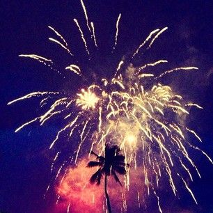 Goldfish Kiss - fireworks and palm trees
