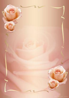 Roses Plus Flower Background Wallpaper Flower Frame Boarders And Frames