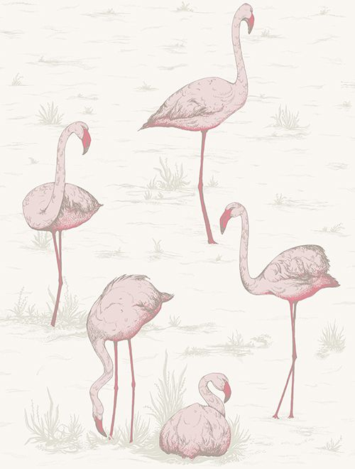 Flamingos By Cole Son White Wallpaper 958045 In