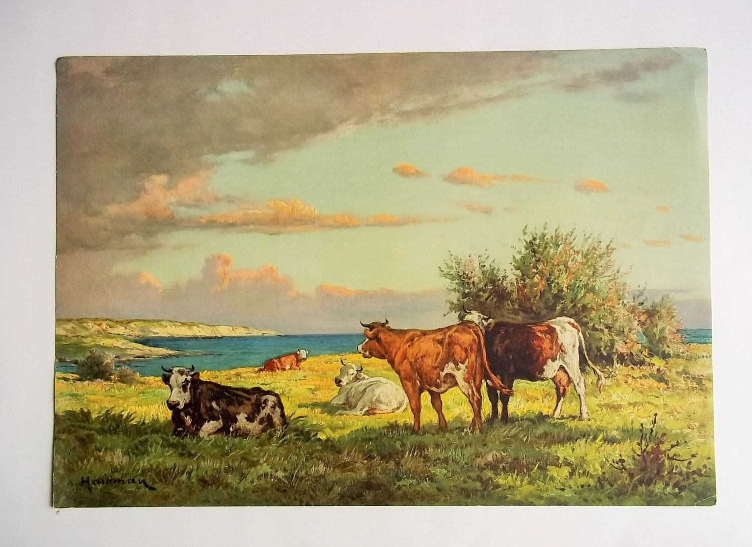 Cows at Pasture Vintage Lithograph, Farmhouse Decor, Country ...