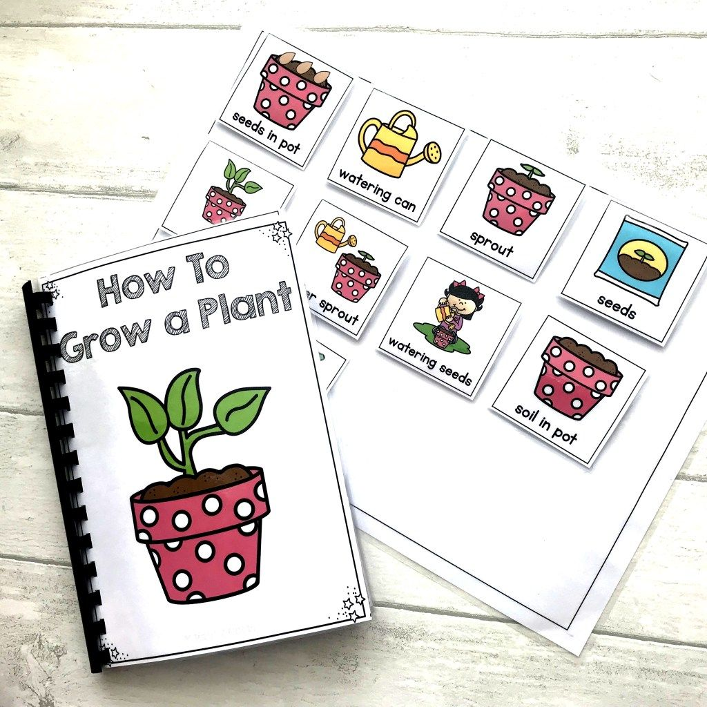 Growing A Plant Life Skills Adapted Book Sequencing