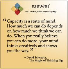 David Schwartz Quote From The Magic Of Thinking Big Capacity Is A