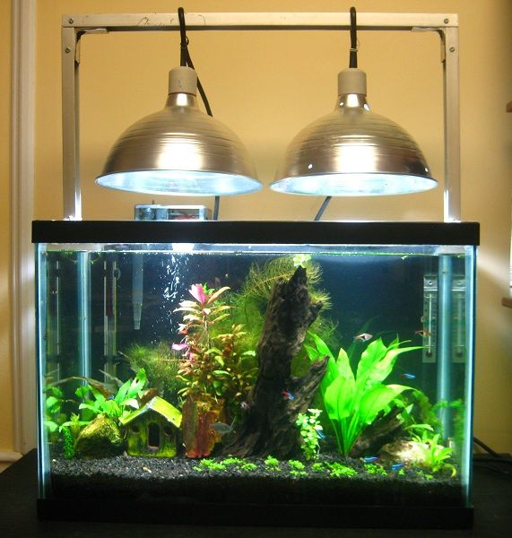 My Inexpensive CFL Light Solution   Page 6   The Planted Tank Forum