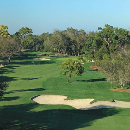 30++ Best golf in tampa fl ideas in 2021