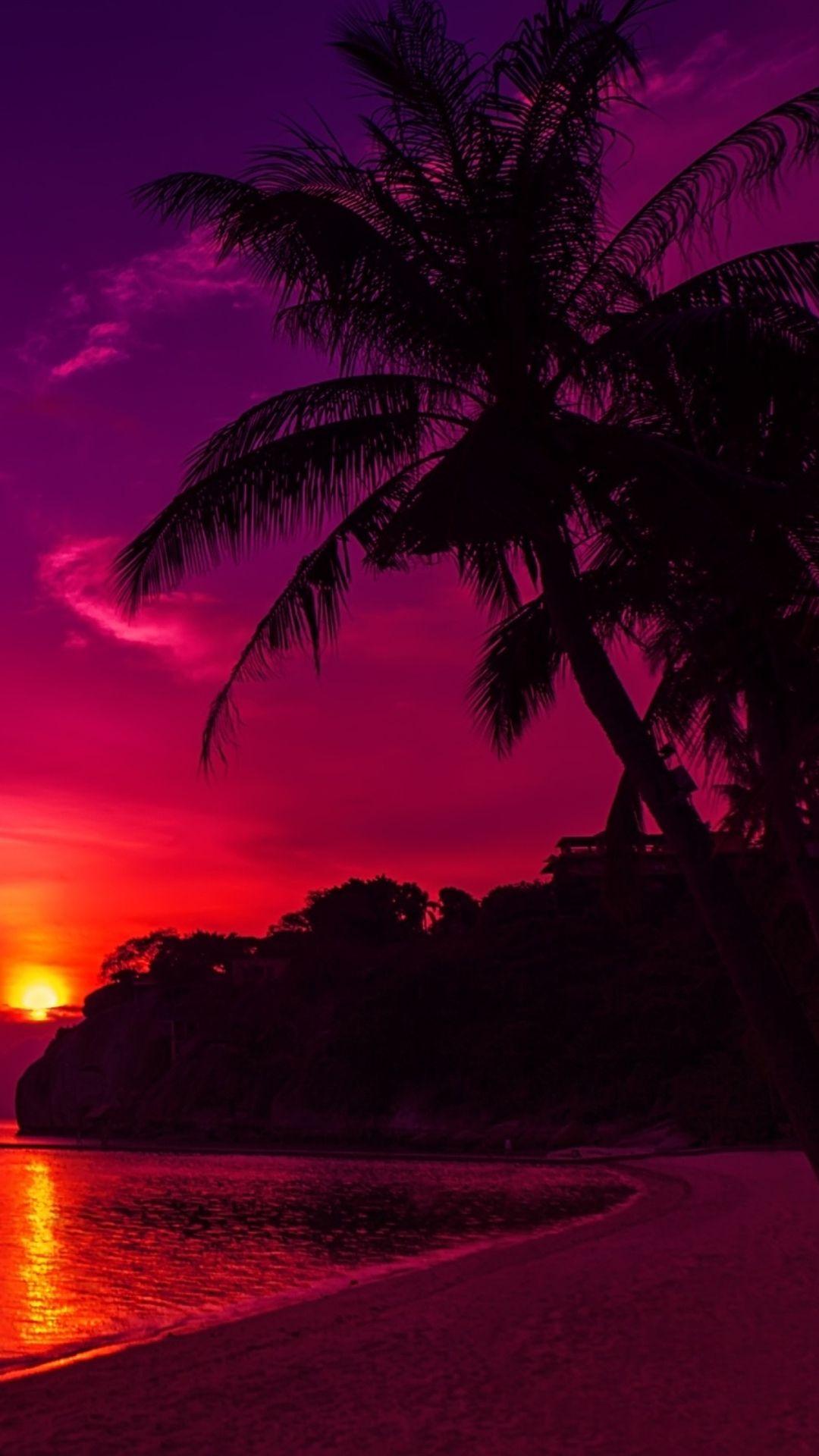 Sky, Tree, Red, Nature, Tropics, Palm tree Sunset iphone