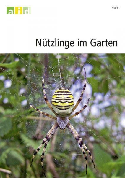 Nützlinge im Garten; Viele wissen, dass Marienkäfer