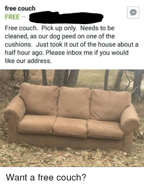 Couch Pick Up Free Couch Couch Sofa Inspiration