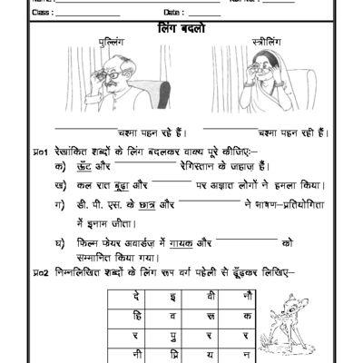 Hindi Grammar - Change the gender in Hindi | worksheets for kids ...