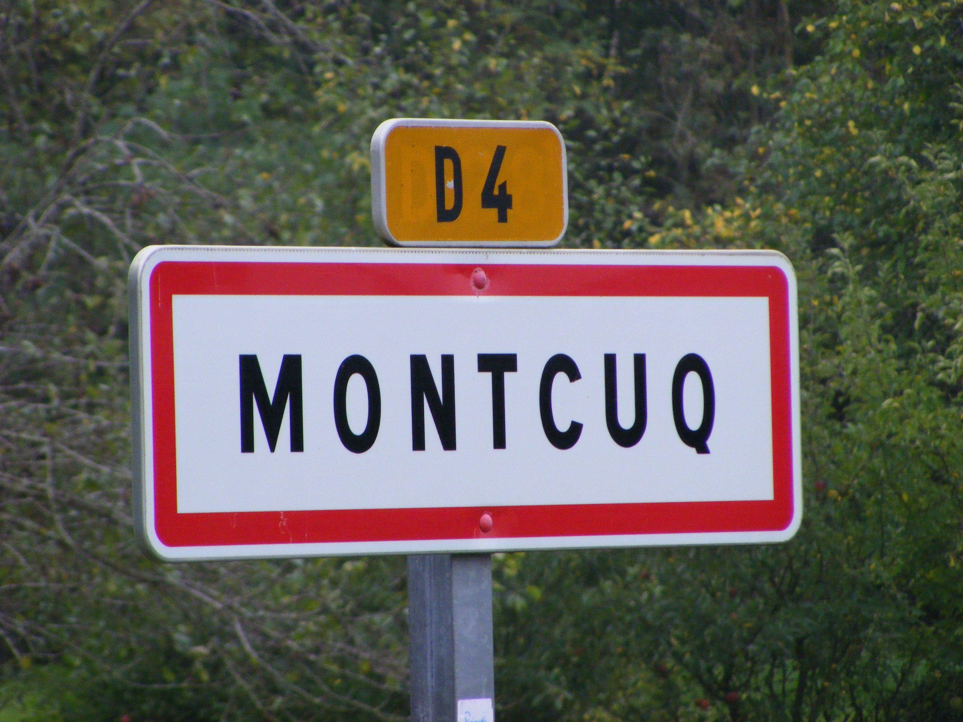 Sallespisse Bibiche Montchaton Decouvrez 25 Noms Aussi Incroyables Qu Hilarants De Nos Communes Francaises Panneaux Droles Visages De Meme Nom Drole