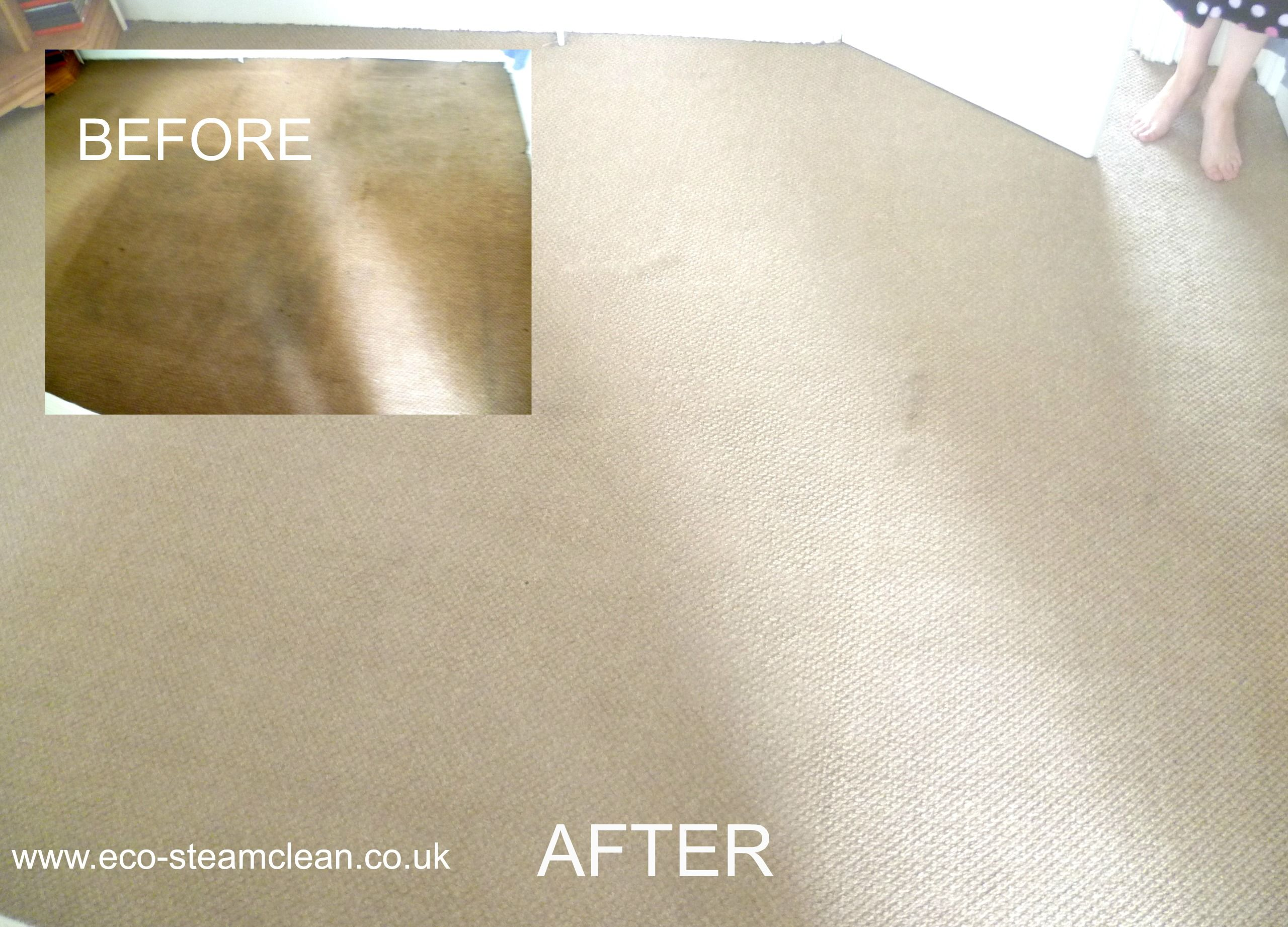 Before And After Photos Of Liverpool Carpet Cleaning
