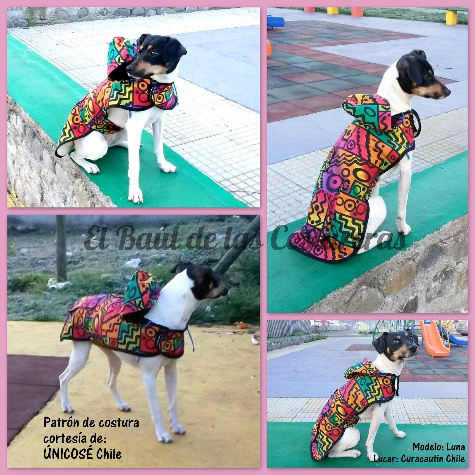 Patrón gratis para imprimir casa de ropa para perros capa con ...