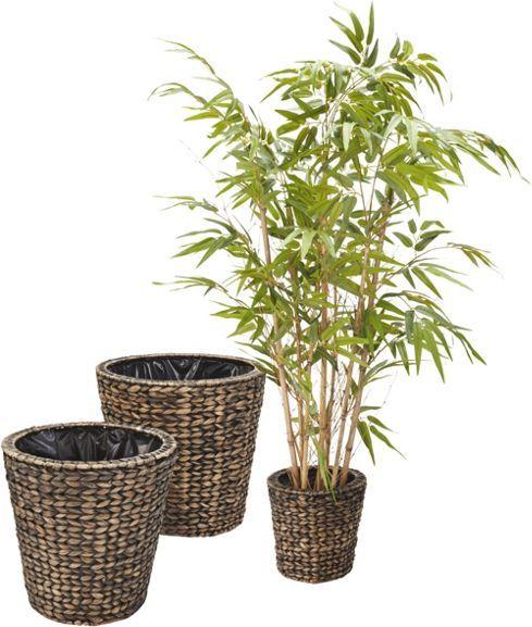 Bambus aus Kunststoff – Gnaz ohne Gießen immer grün