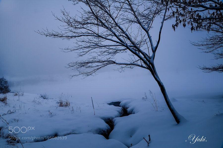 #nature 内山湖 by yuki_