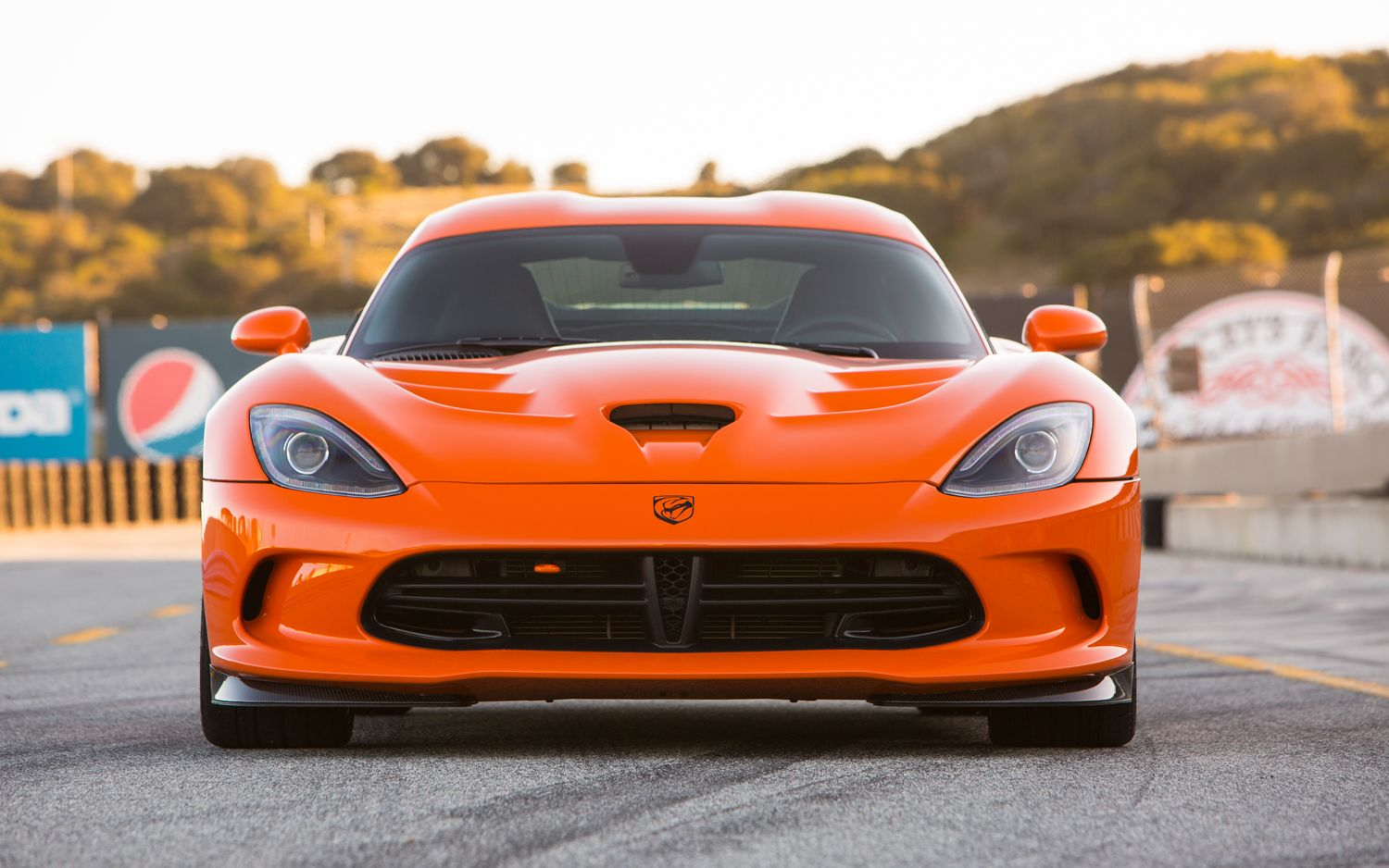 Great Snakes New 2014 Srt Viper Ta Joins The Party Dodge Viper