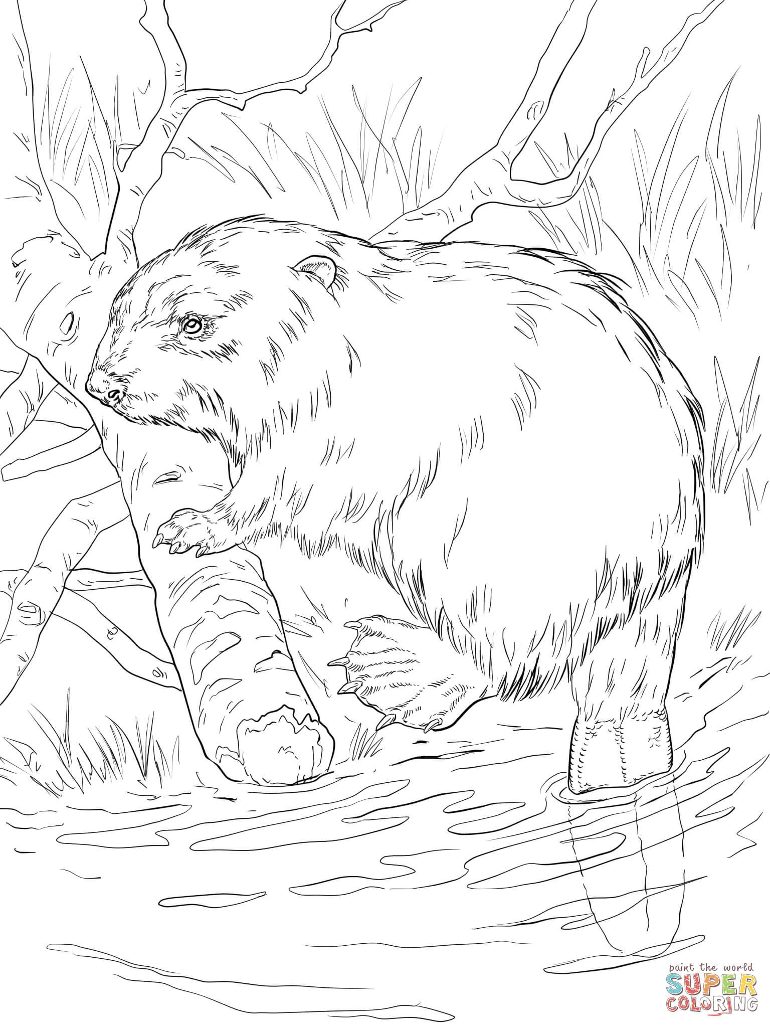 Euraziatische Bever Op Een Rivierbank Farm Animal Coloring Pages Coloring Pages Animal Coloring Pages