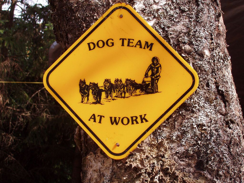 Sled Dog Sign I Want One Of Those For My Yard