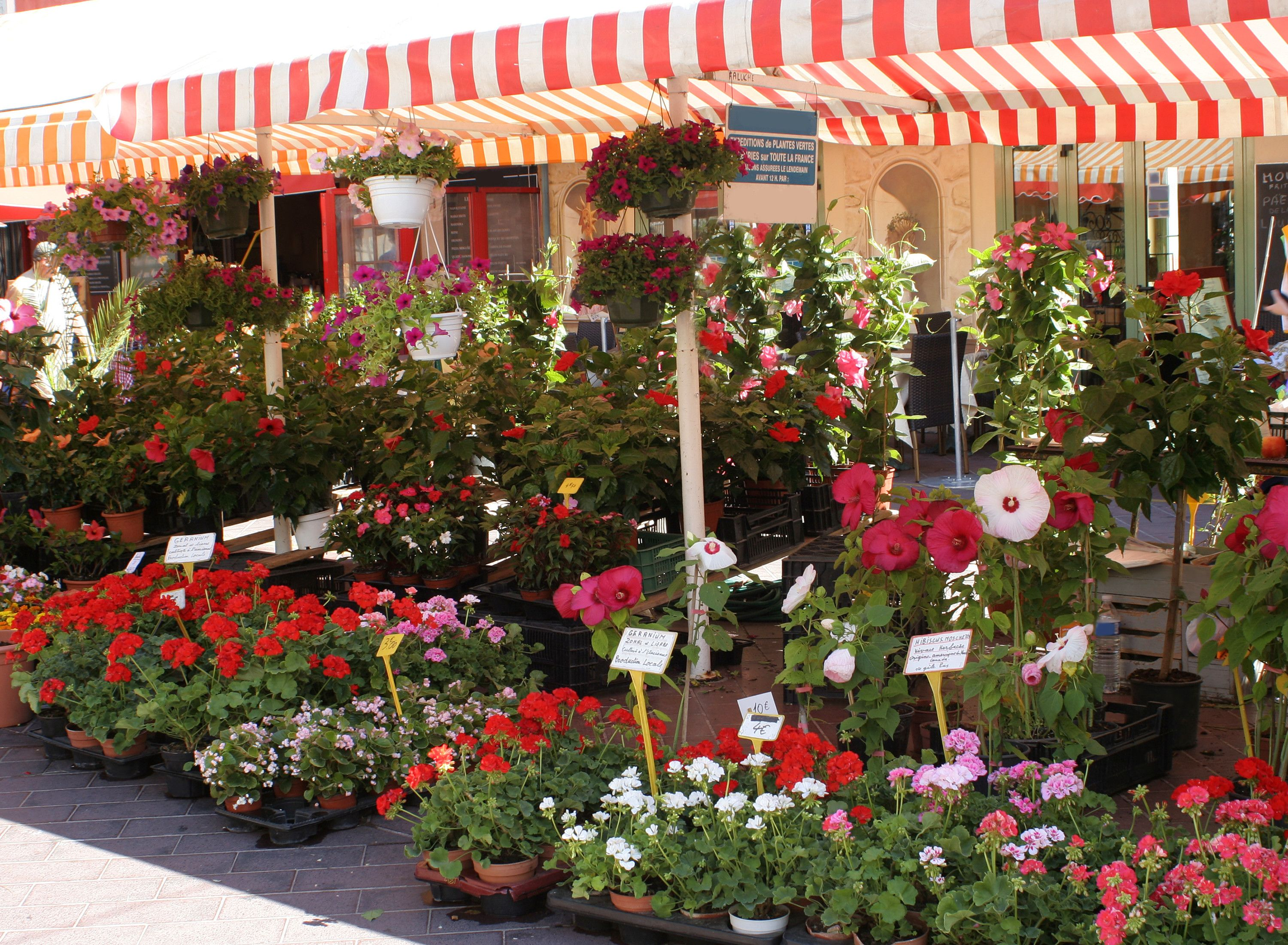 French Market Inspires Images Of A Parisian Flower Stall With Roses Magnolia Gardenia Tuberose And Arris Blossom Outdoor Flowers Plants Inspirational Images