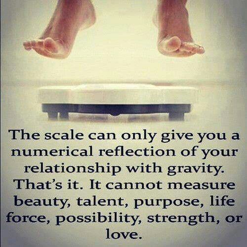 The scale...