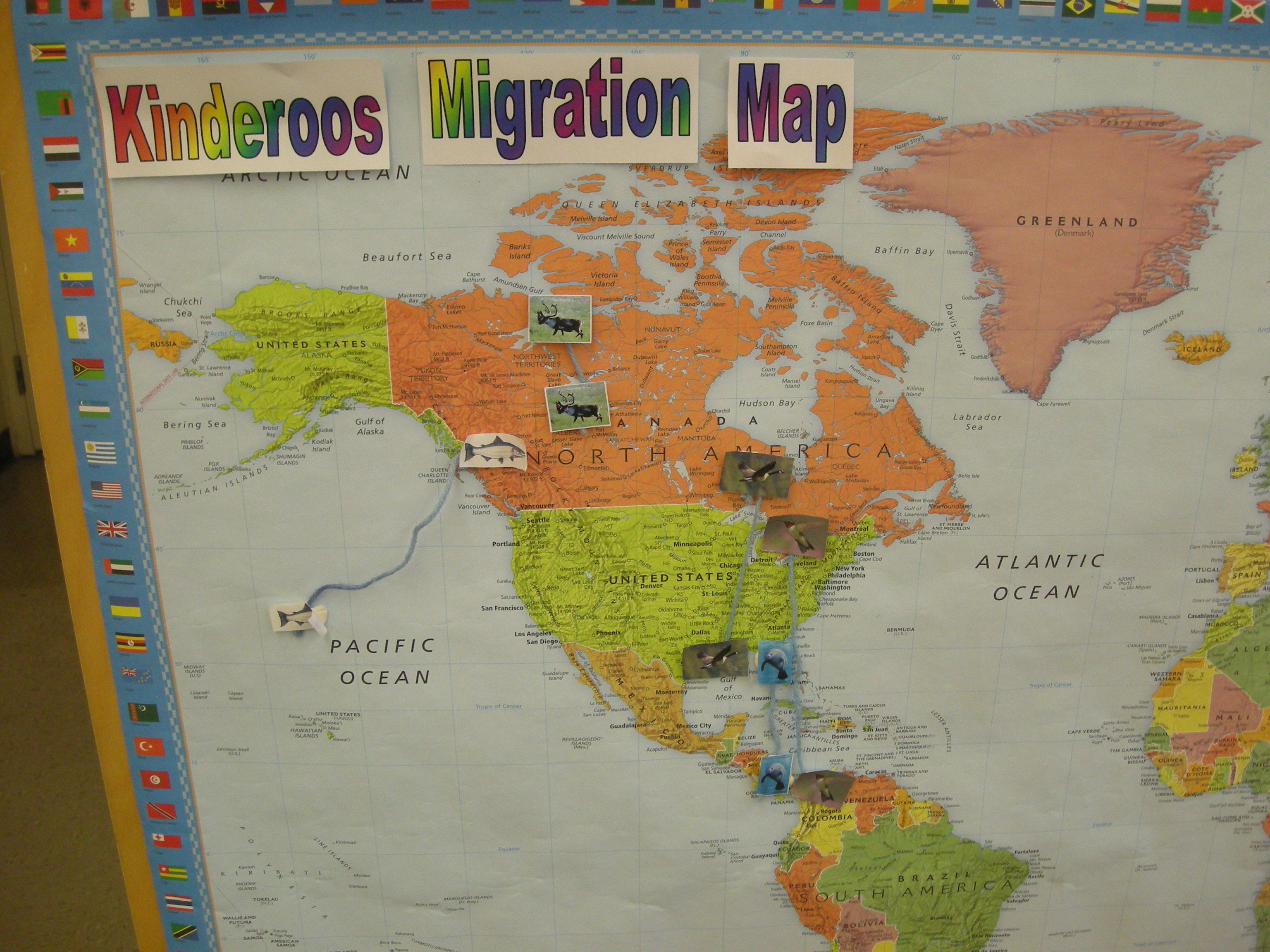 Migration Activity For First Grade