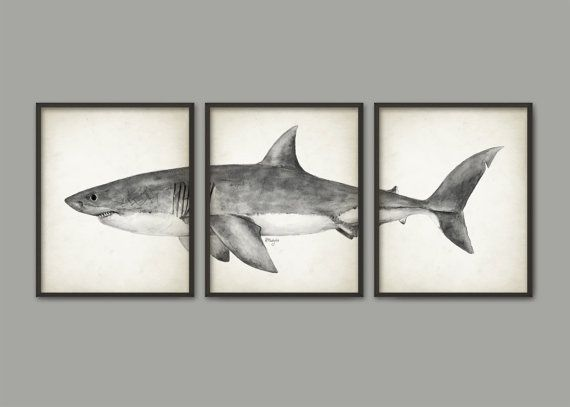 Great White Shark Watercolor Art Poster Set Of 3 - Shark Art Print ...