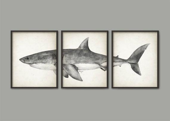 Great White Shark Watercolor Art Poster Set Of 3 Shark