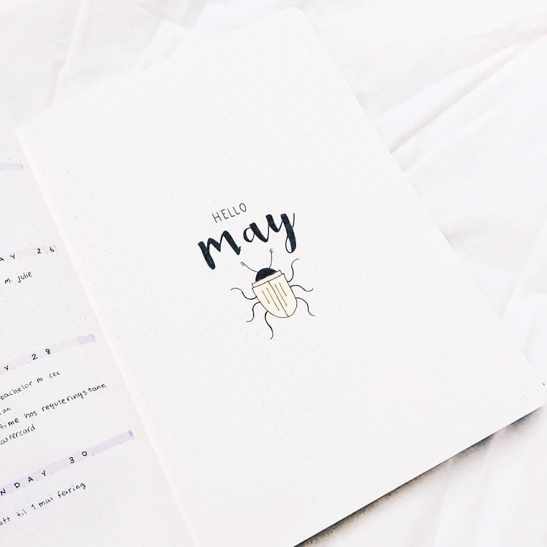 Hello May 🔜 it's a beetle there because my bachelor assignment is to make a packaging design for edible insects, and It has to be done in May. I'm so stressed, because I have so much left 🐞 - The beetle isn't that good I think, but it's cute, and I like it. • • • • #bulletjournal #plannercommunity #bujoaddict #bujo #bujoinspire #bujojunkies #leuchtturm1917 #likeforlike #beetle #bachelor #may