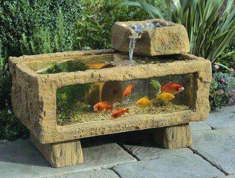Aquarium ext rieur terrasse bbq am nagement ext rieur for Aquarium exterieur