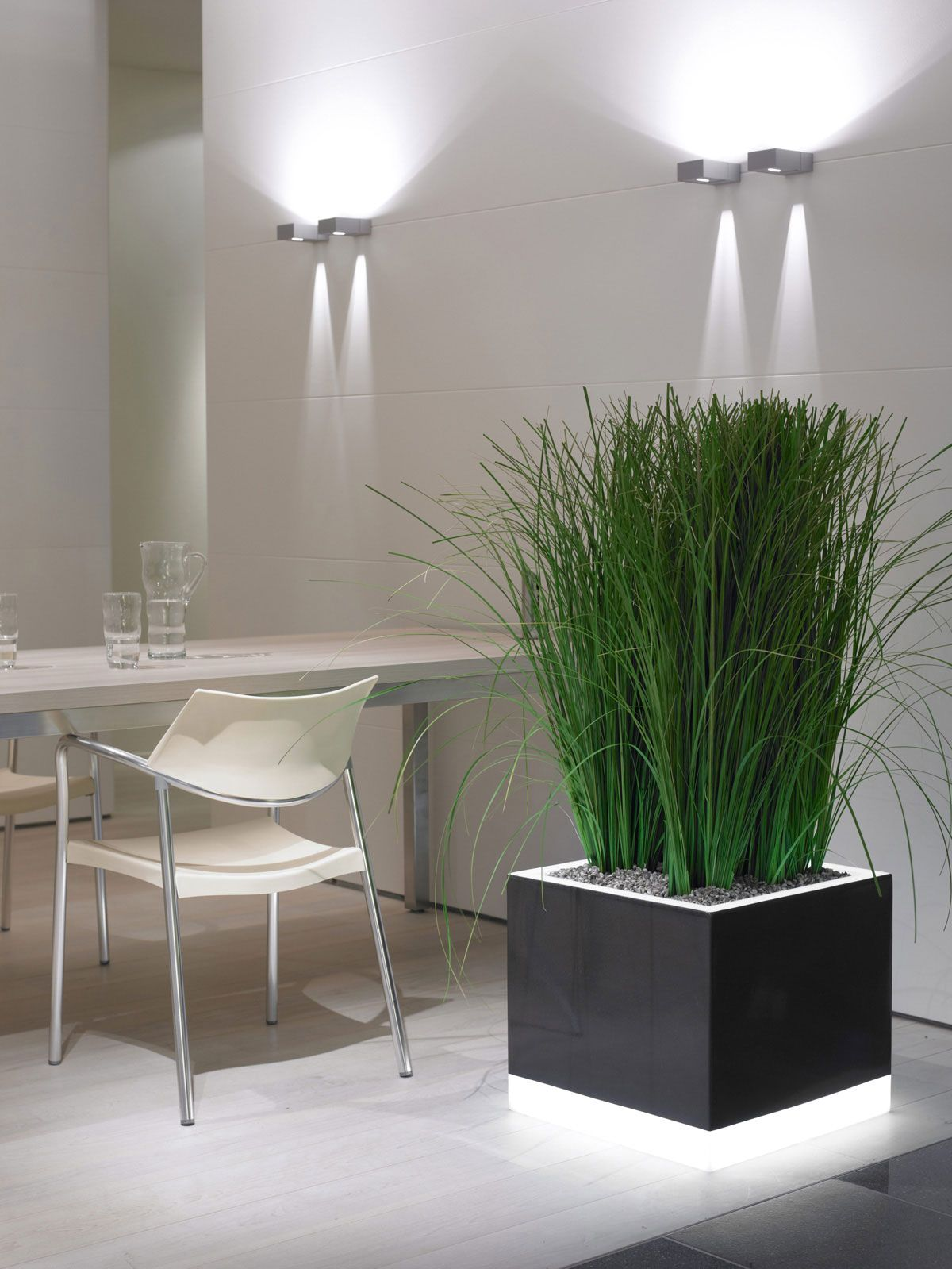 More Illumination For Your Interior By Green Design Indoor Plant Hire Floor Plants And