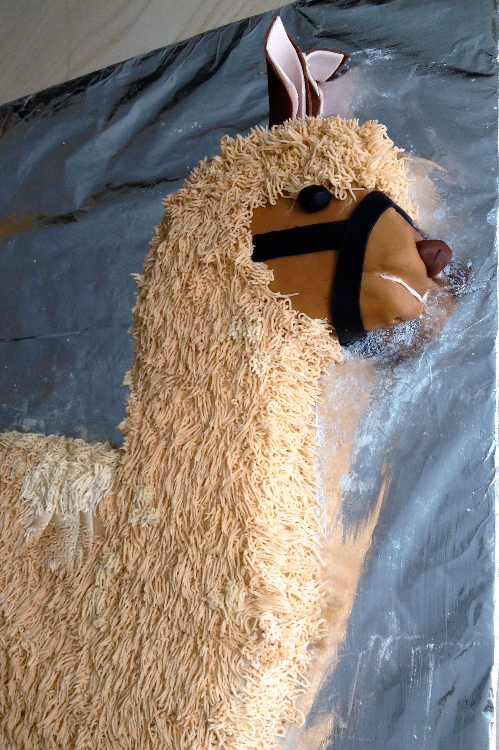 Close Up Of The Llama Birthday Cake I Used Fondant For