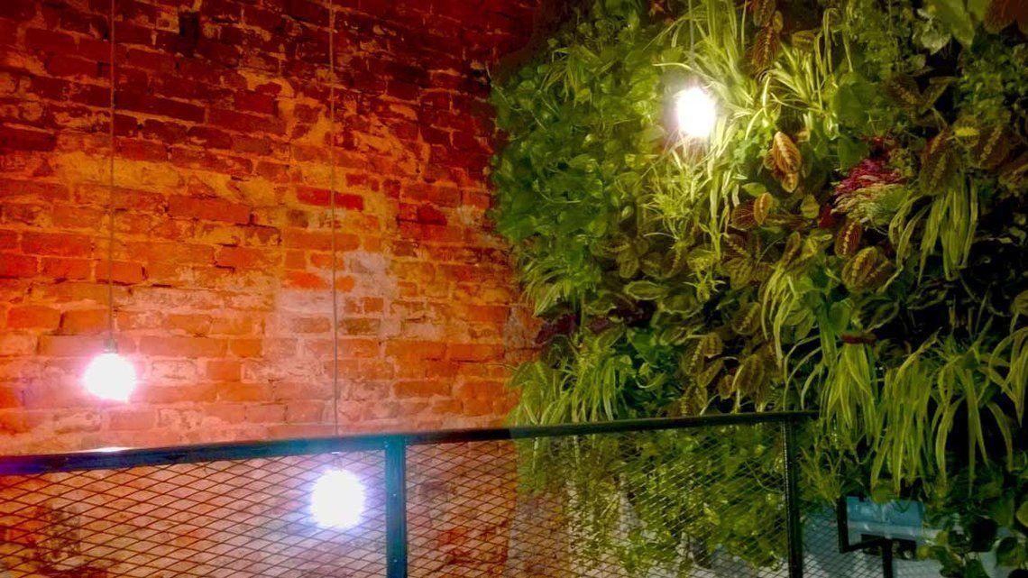 #handwerkliches #platzangebot #keinesfalls #stadtgrtner #beschrieben #bevlkerung #kreativitt #verzichten #lediglich #gardening #beschrnkt #deswegen #vertical #geschick #austobenVertical Gardening - Wenig Platz und viel Ertrag - Immer mehr Stadtgärtner wollen sich austoben, doch ihr Platzangebot ist meist beschränkt. Wie schon in einem unserer letzten Artikel beschrieben, muss die urbane Bevölkerung deswegen keinesfalls auf den Anbau von Blumen, Kräutern oder Gemüse verzichten. Denn auch a.. #anbauvongemüse