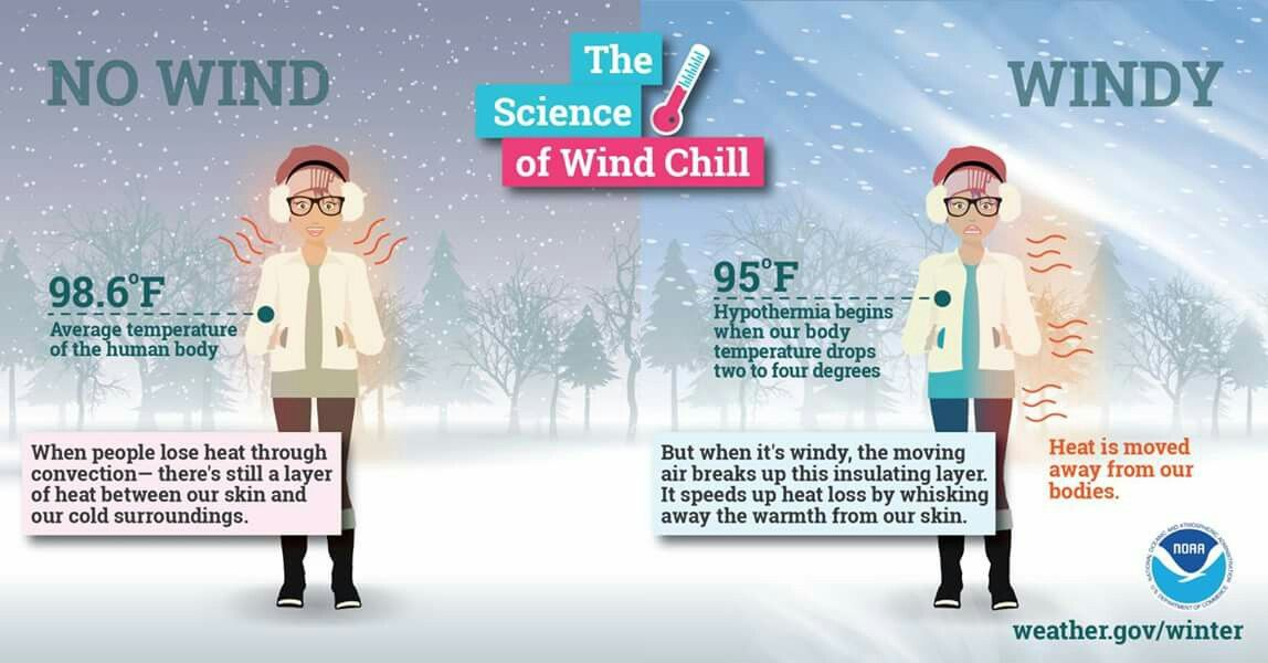 Pin by Carolyn McNeill on Weather Human body temperature