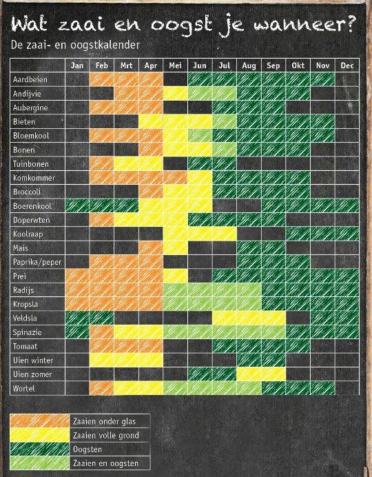 Zaai en oogst moestuin kalender