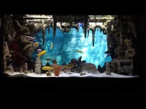 Diy Underwater Cavern Aquarium With 3d Background Aquarium