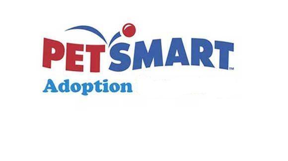 Petsmart Adoption Survey Connecting With Customers Petsmart Surveys Adoption