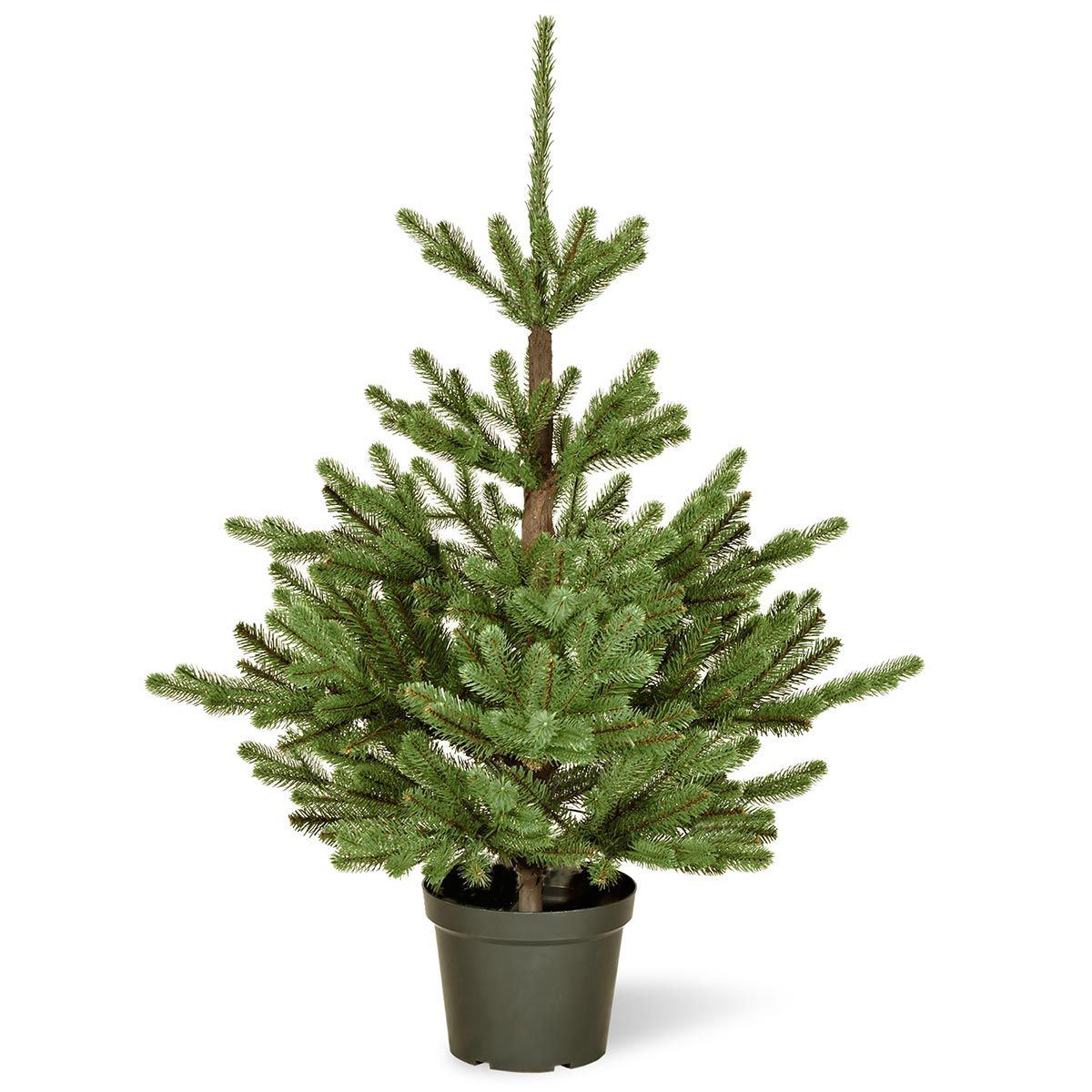 3ft Imperial Spruce Potted Feel Real Artificial Christmas Tree Potted Christmas Trees Artificial Christmas Tree Christmas Plants