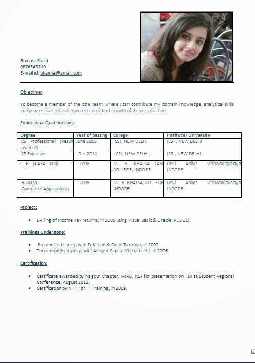 Best Professional Resume Examples Sample Template Example
