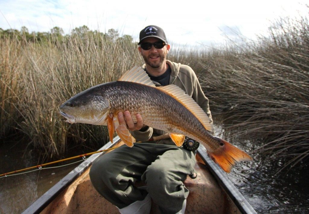 Charleston south carolina redfish on fly fantastic for South carolina fishing