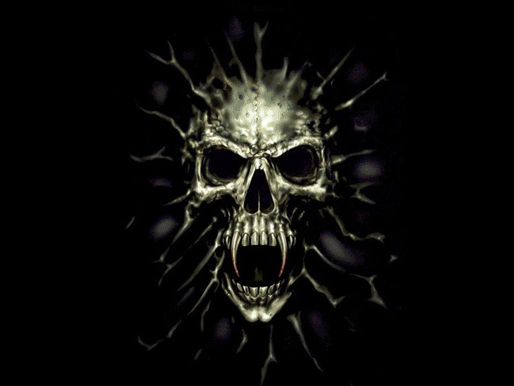 Harley Davidson Number One Skull Logo Wallpaper For Desktop