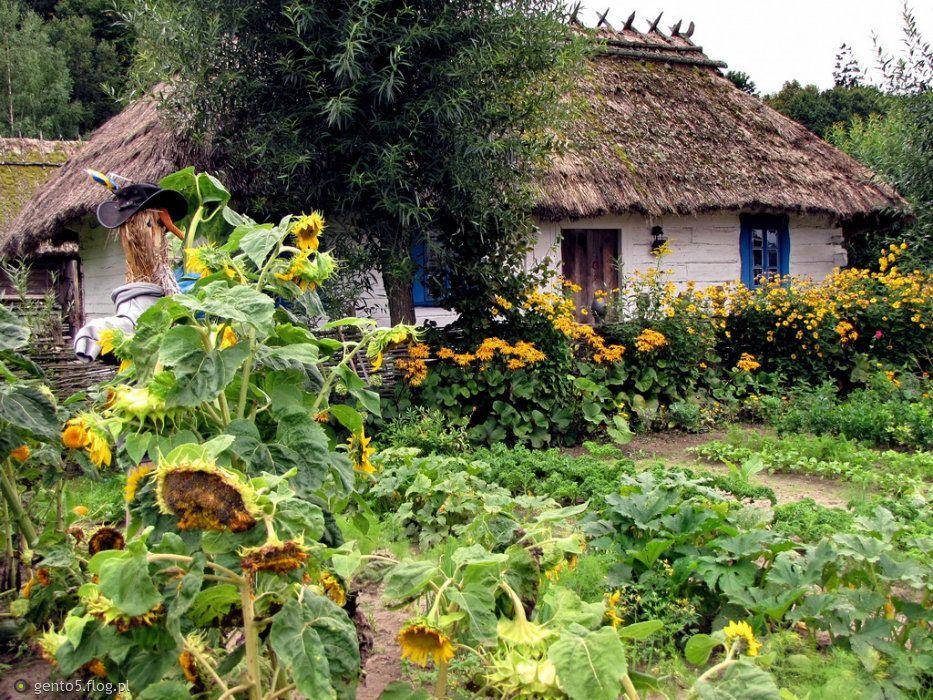 Wiejski Ogród Wiejskie Ogrody Domy I Wiejskie Chaty
