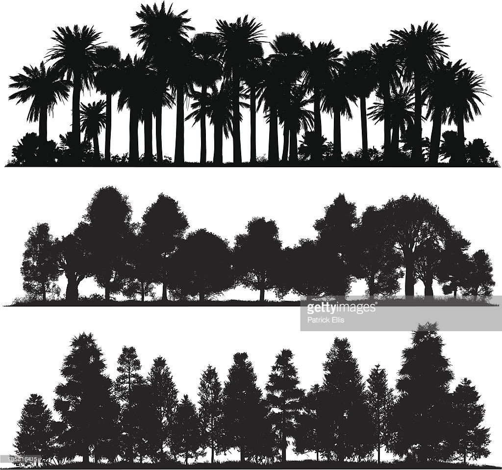 Vector Drawing Lines Java : Vector art forest silhouettes drawings pinterest