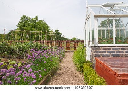 Greenhouse And Raised Vegetable Beds In The English Cottage Garden