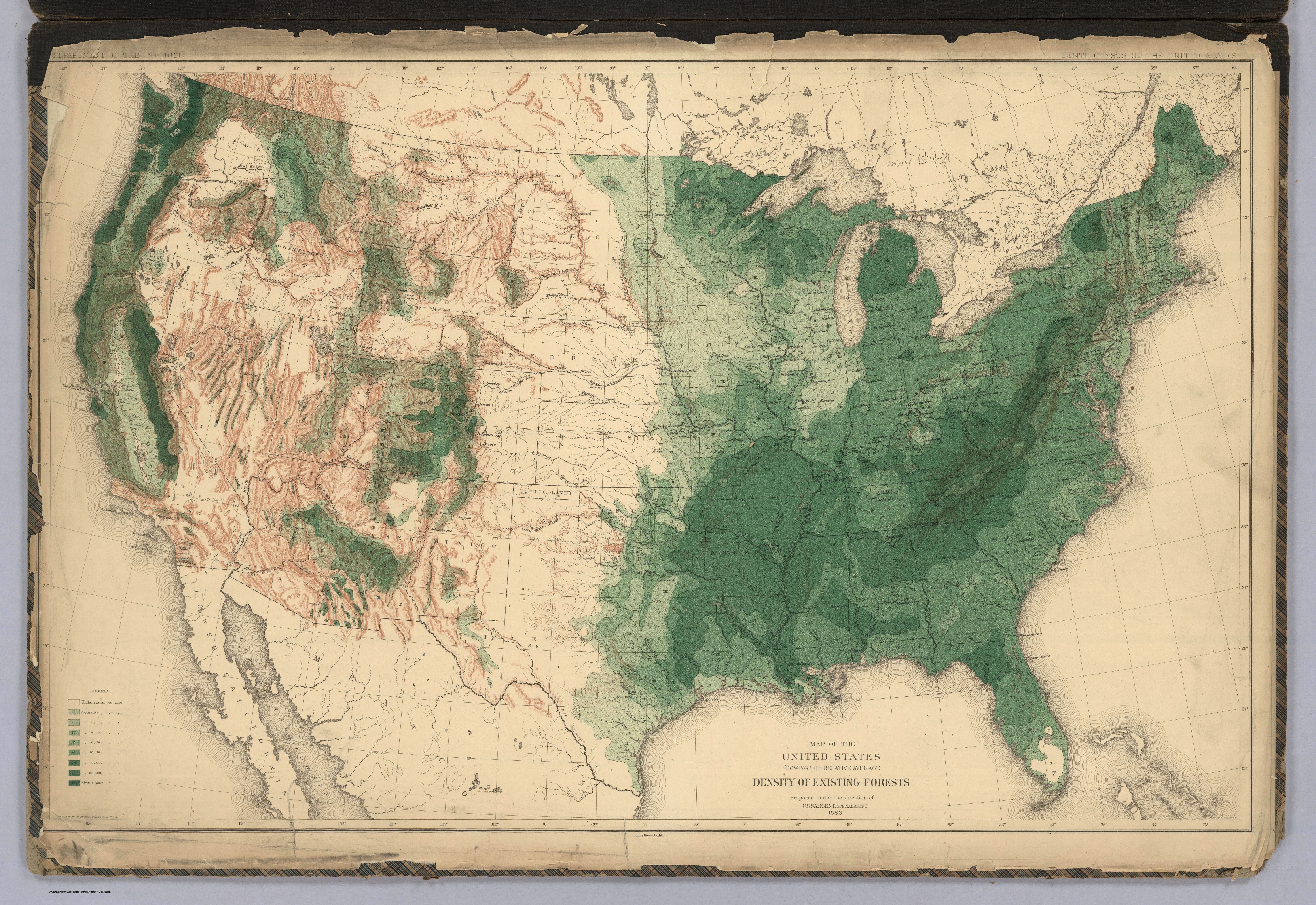 Pretty Tree Maps Showing The State Of American Forests In - Us population density map 1870s