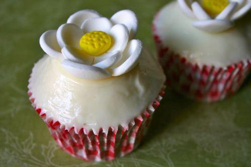 http://bake-mania.com Cupcakes