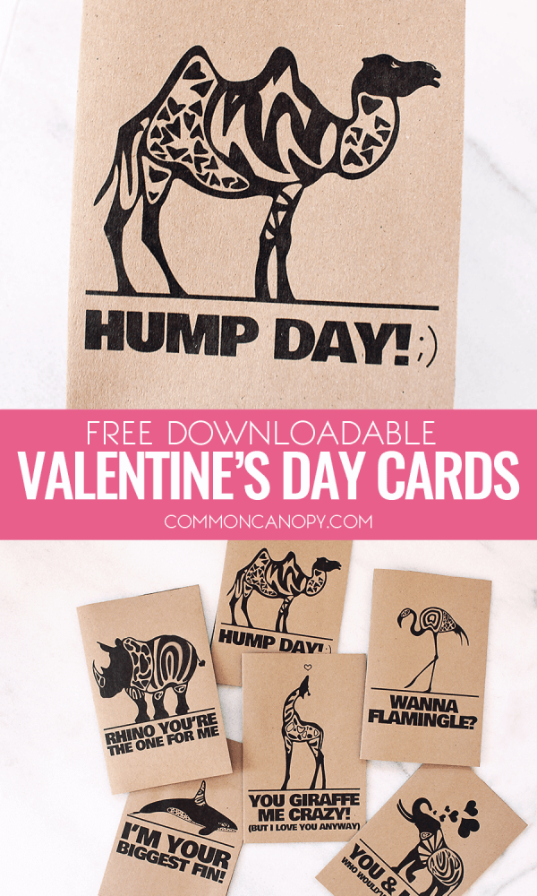 Haha! These quirky animal Valentine\'s Day cards are the BEST! I ...
