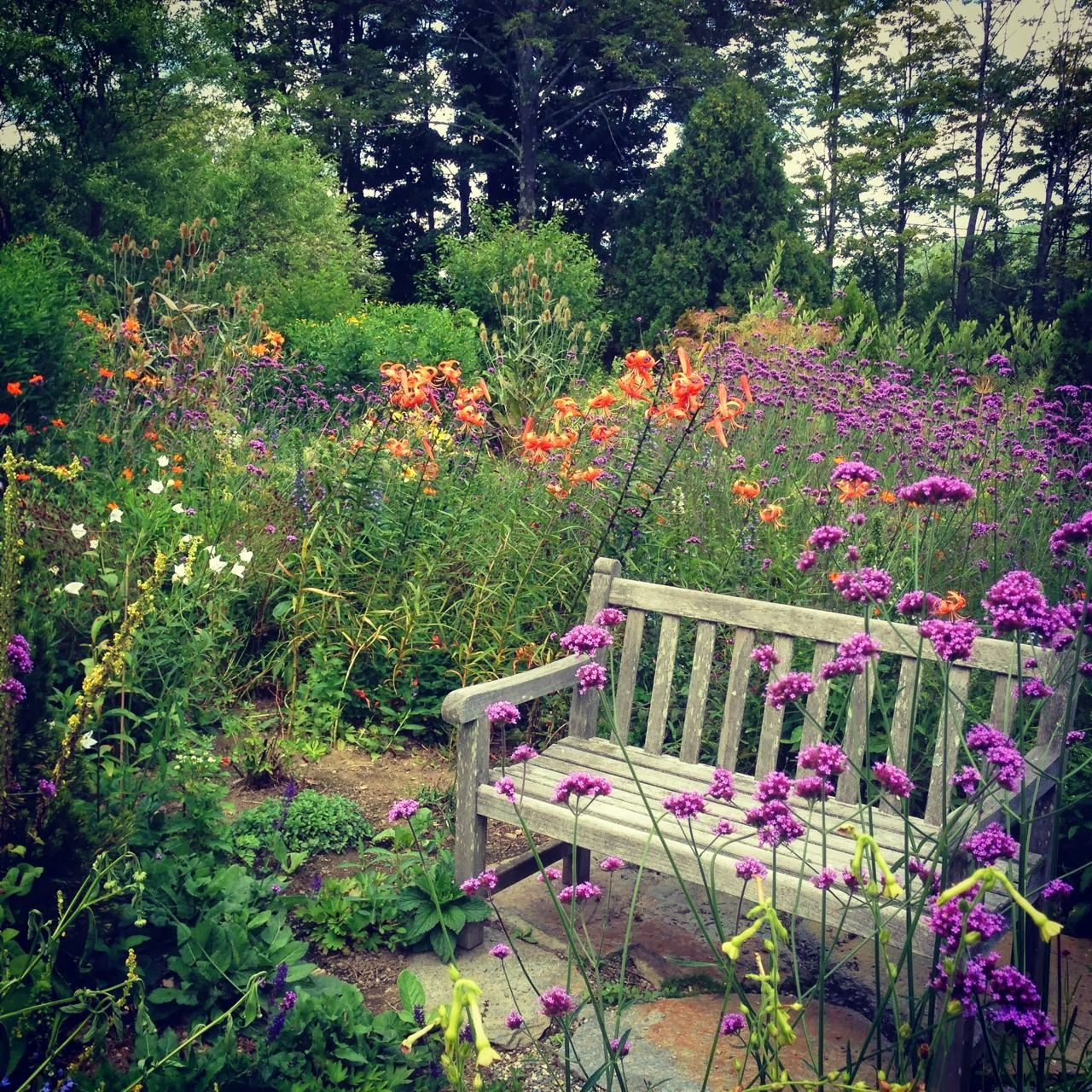 Glimpses of an Intimate Country Garden... designed by Mary and ...